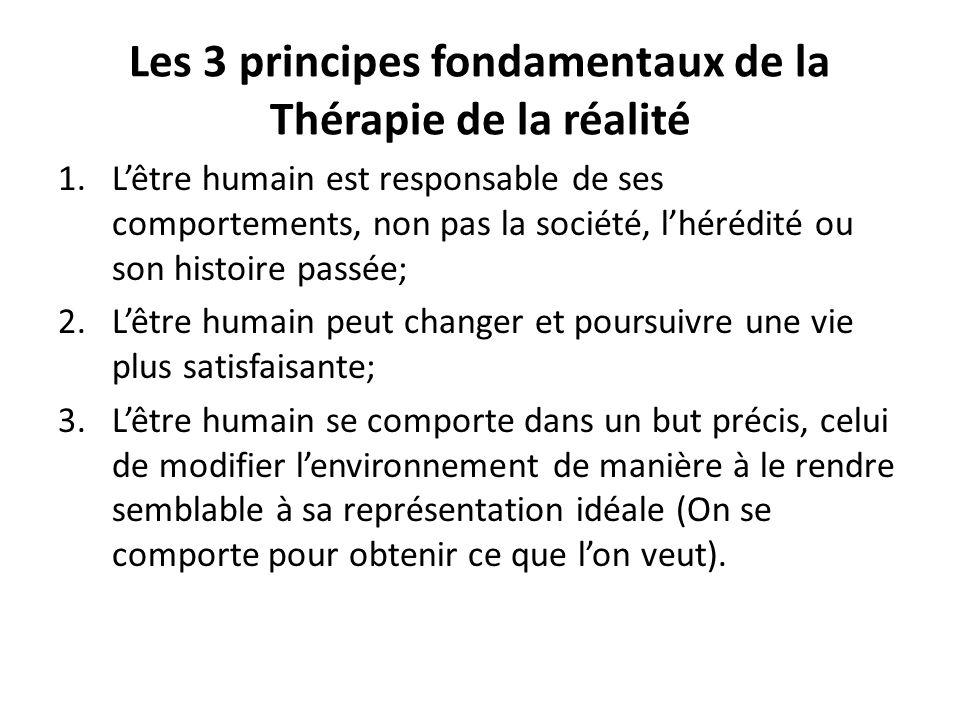 Les 3 principes fondamentaux de la Thérapie de la réalité
