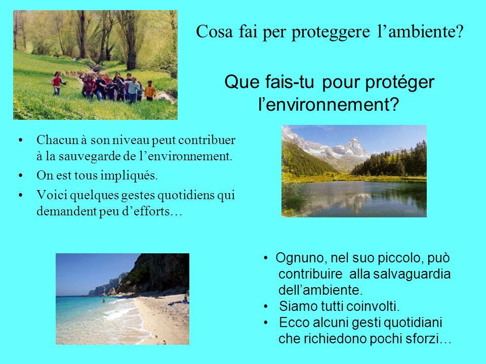 Cosa fai per proteggere l'ambiente