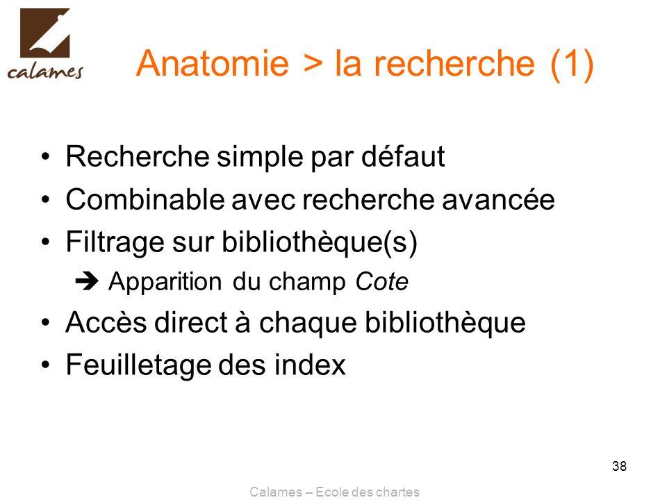 Anatomie > la recherche (1)