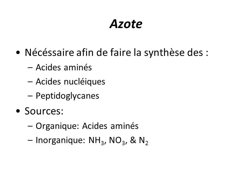 Azote Nécéssaire afin de faire la synthèse des : Sources: