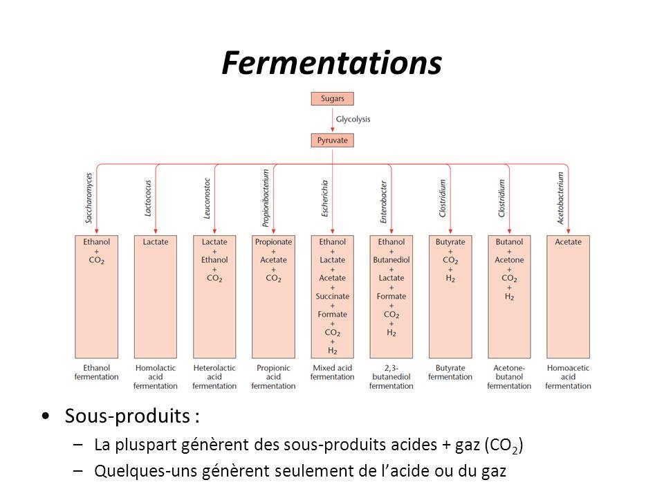 Fermentations Sous-produits :