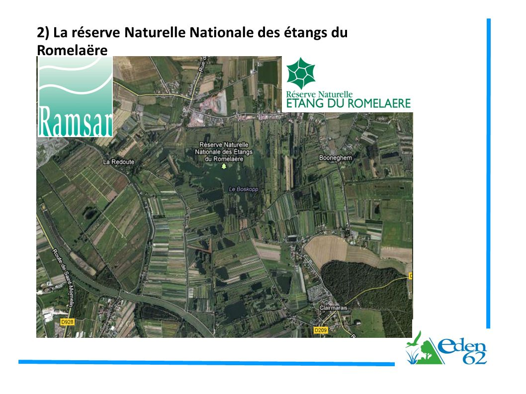 2) La réserve Naturelle Nationale des étangs du Romelaëre