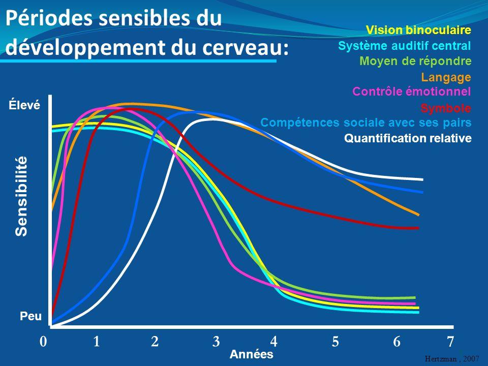 Périodes sensibles du développement du cerveau: