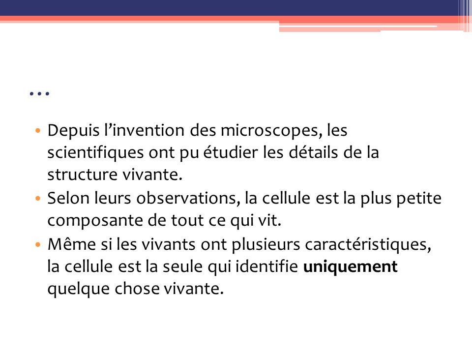 … Depuis l'invention des microscopes, les scientifiques ont pu étudier les détails de la structure vivante.