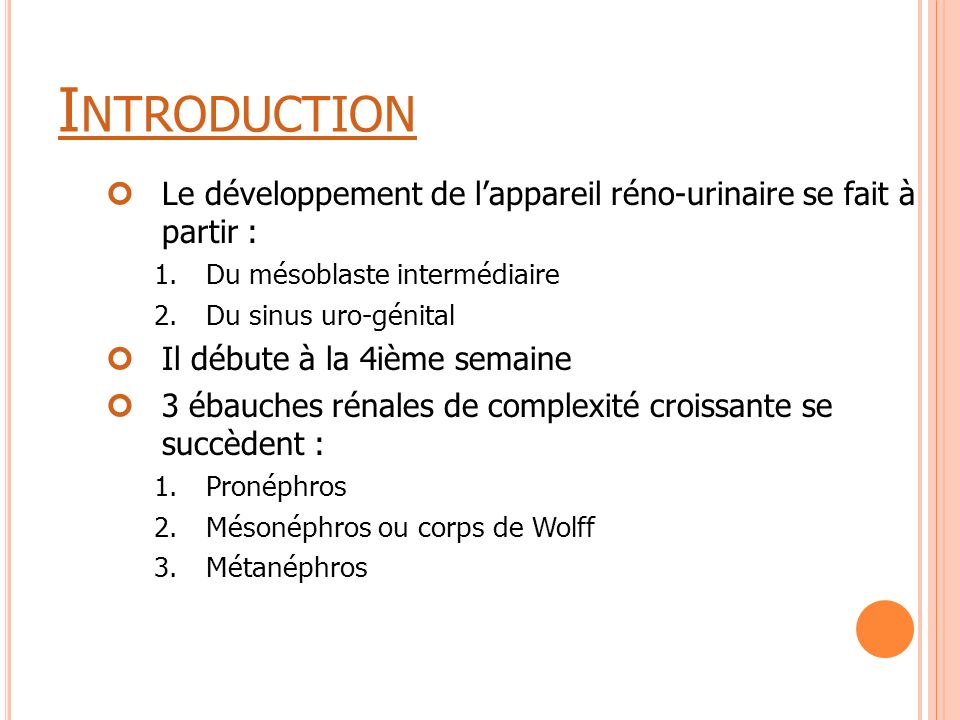 Introduction Le développement de l'appareil réno-urinaire se fait à partir : Du mésoblaste intermédiaire.