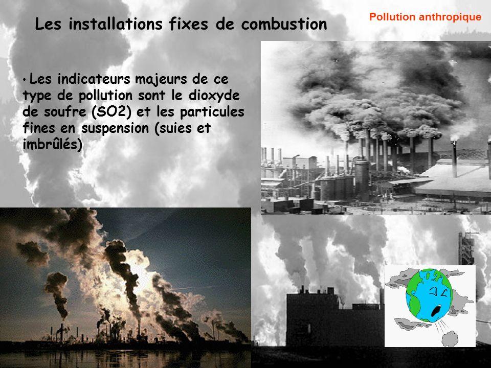 La pollution atmosph rique et la biosurviellence ppt for Les types de combustion