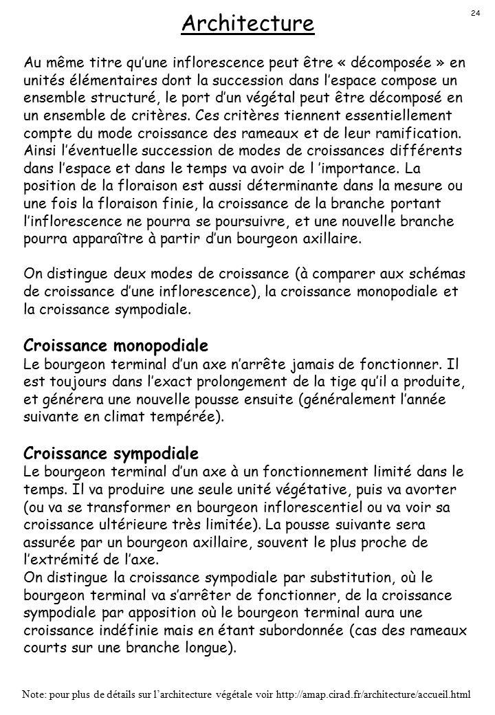 Architecture Croissance monopodiale Croissance sympodiale
