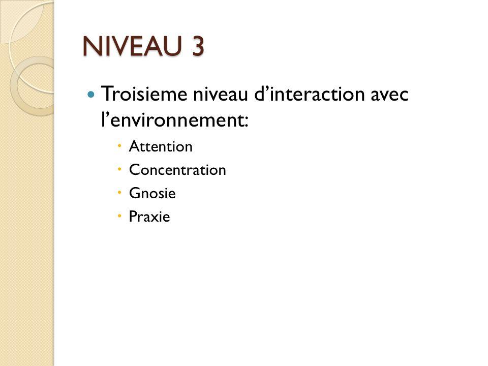 NIVEAU 3 Troisieme niveau d'interaction avec l'environnement: