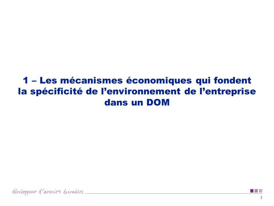 1 – Les mécanismes économiques qui fondent la spécificité de l'environnement de l'entreprise dans un DOM