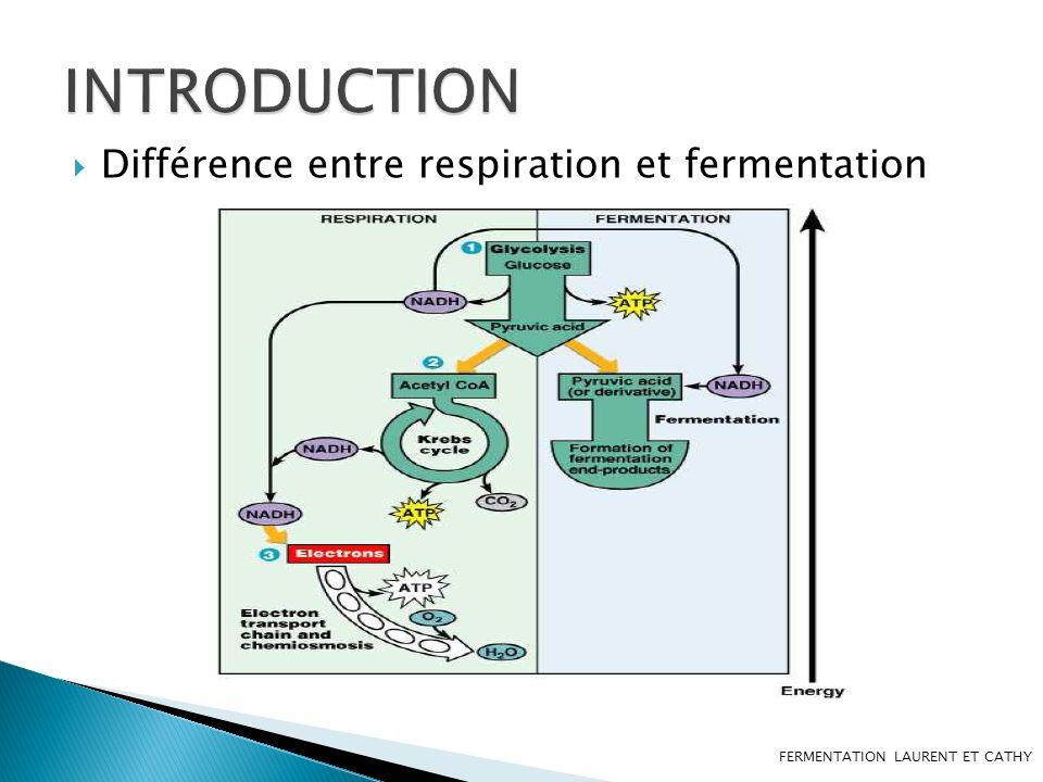 INTRODUCTION Différence entre respiration et fermentation