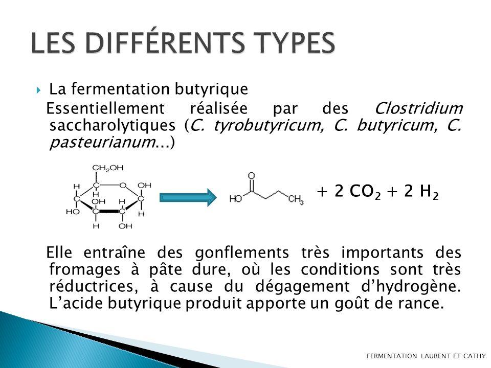 LES DIFFÉRENTS TYPES + 2 CO2 + 2 H2 La fermentation butyrique