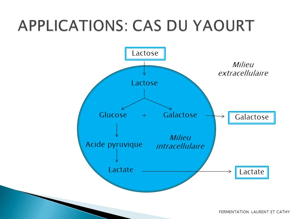 APPLICATIONS: CAS DU YAOURT