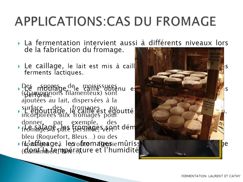 APPLICATIONS:CAS DU FROMAGE