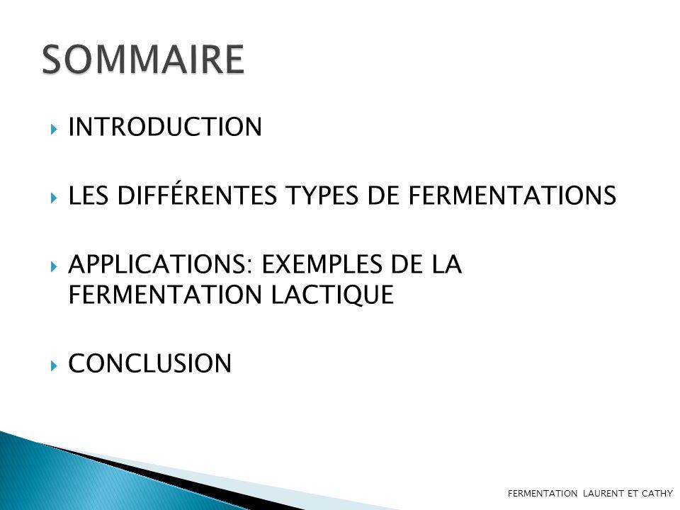 SOMMAIRE INTRODUCTION LES DIFFÉRENTES TYPES DE FERMENTATIONS