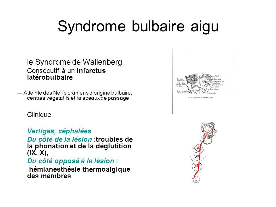 Fabulous S.Canaple Orthophonie 1ère année - ppt video online télécharger YX12