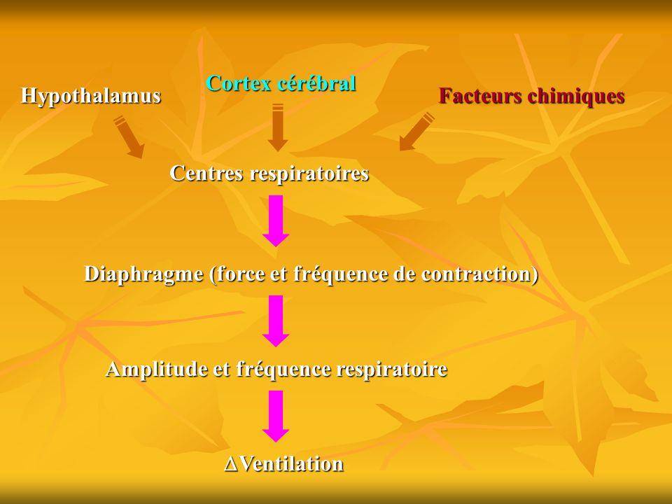 Cortex cérébral Hypothalamus. Facteurs chimiques. Centres respiratoires. Diaphragme (force et fréquence de contraction)