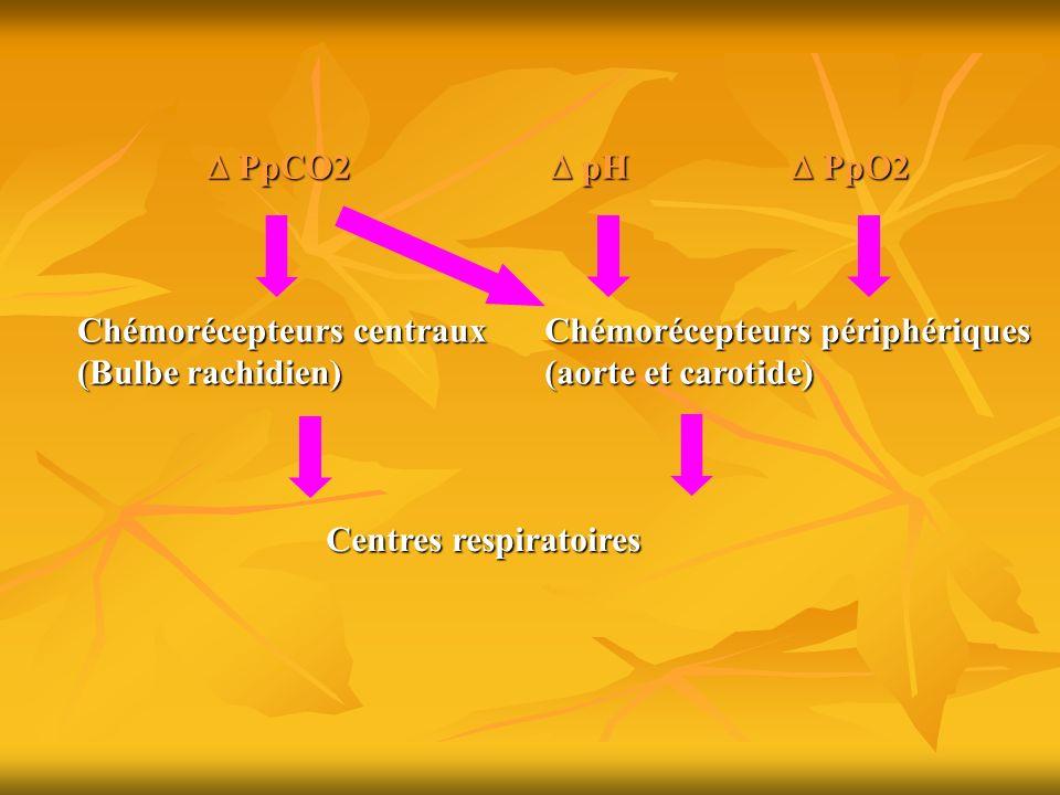  PpCO2  pH.  PpO2. Chémorécepteurs centraux. (Bulbe rachidien) Chémorécepteurs périphériques.