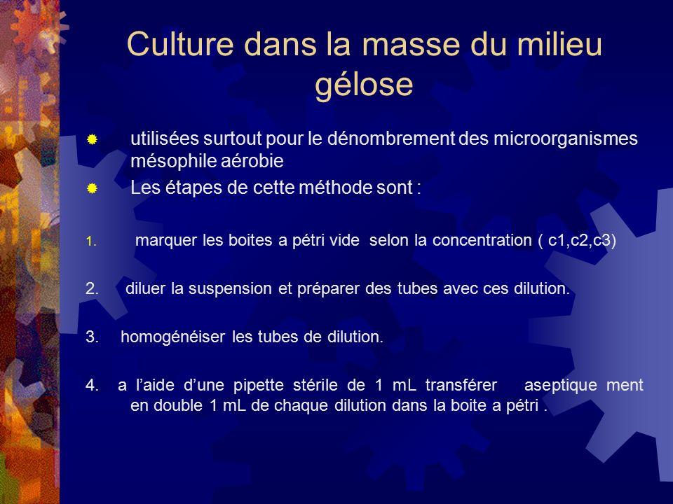 Culture dans la masse du milieu gélose
