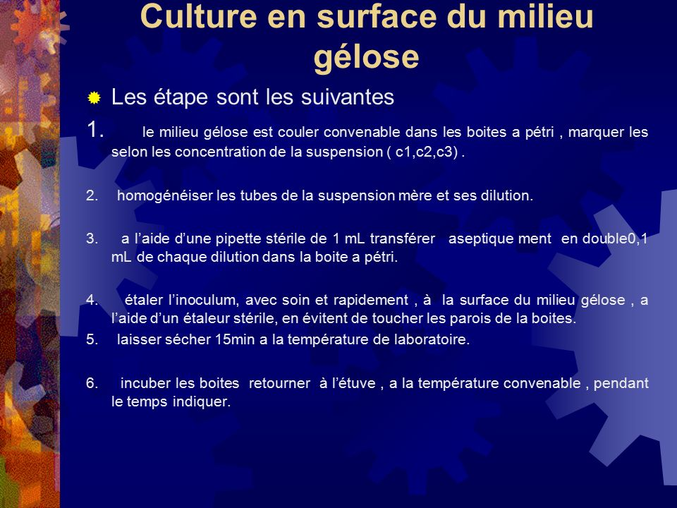 Culture en surface du milieu gélose