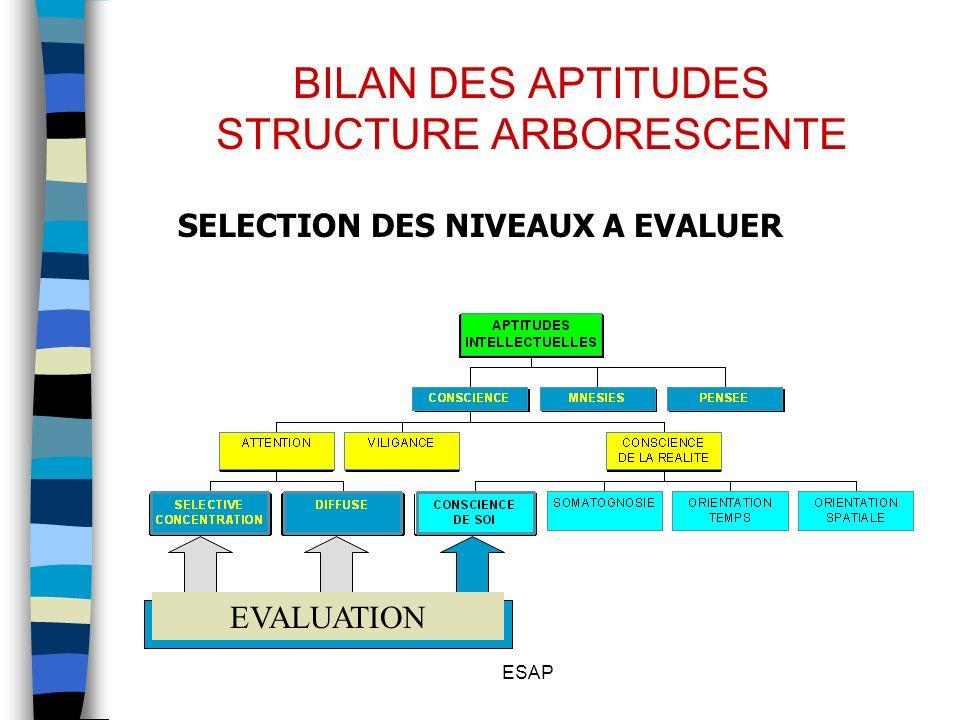 BILAN DES APTITUDES STRUCTURE ARBORESCENTE