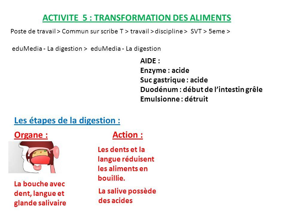 ACTIVITE 5 : TRANSFORMATION DES ALIMENTS