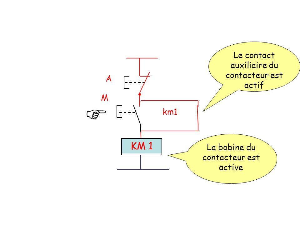  KM 1 Le contact auxiliaire du contacteur est actif A M km1