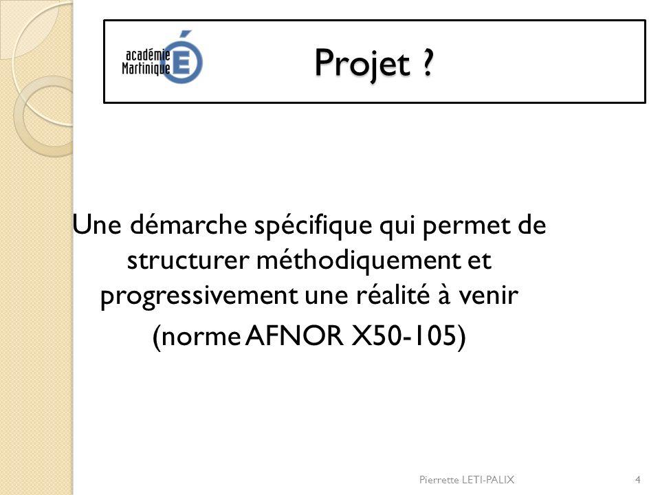 Projet Une démarche spécifique qui permet de structurer méthodiquement et progressivement une réalité à venir (norme AFNOR X50-105)