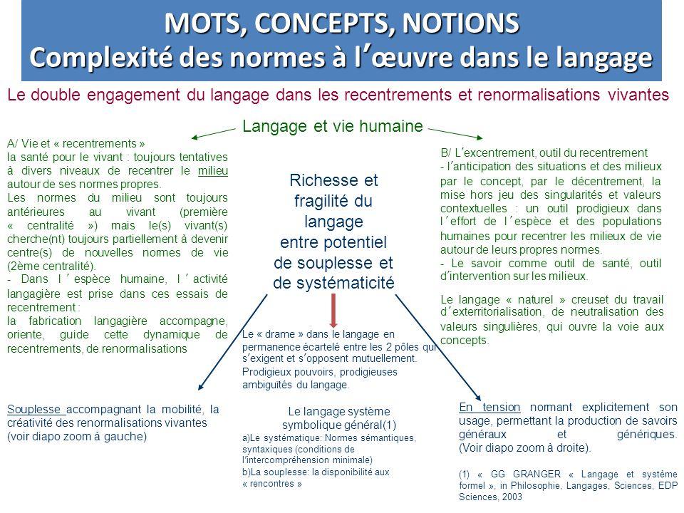 Complexité des normes à l'œuvre dans le langage
