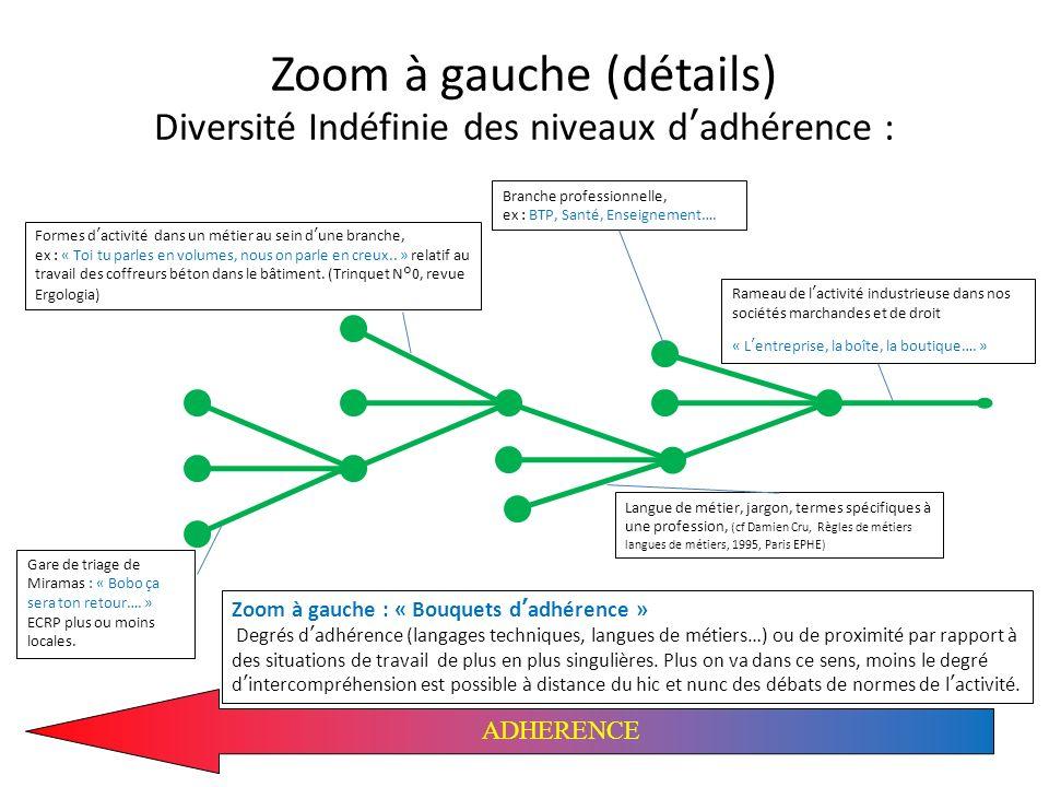 Zoom à gauche (détails) Diversité Indéfinie des niveaux d'adhérence :