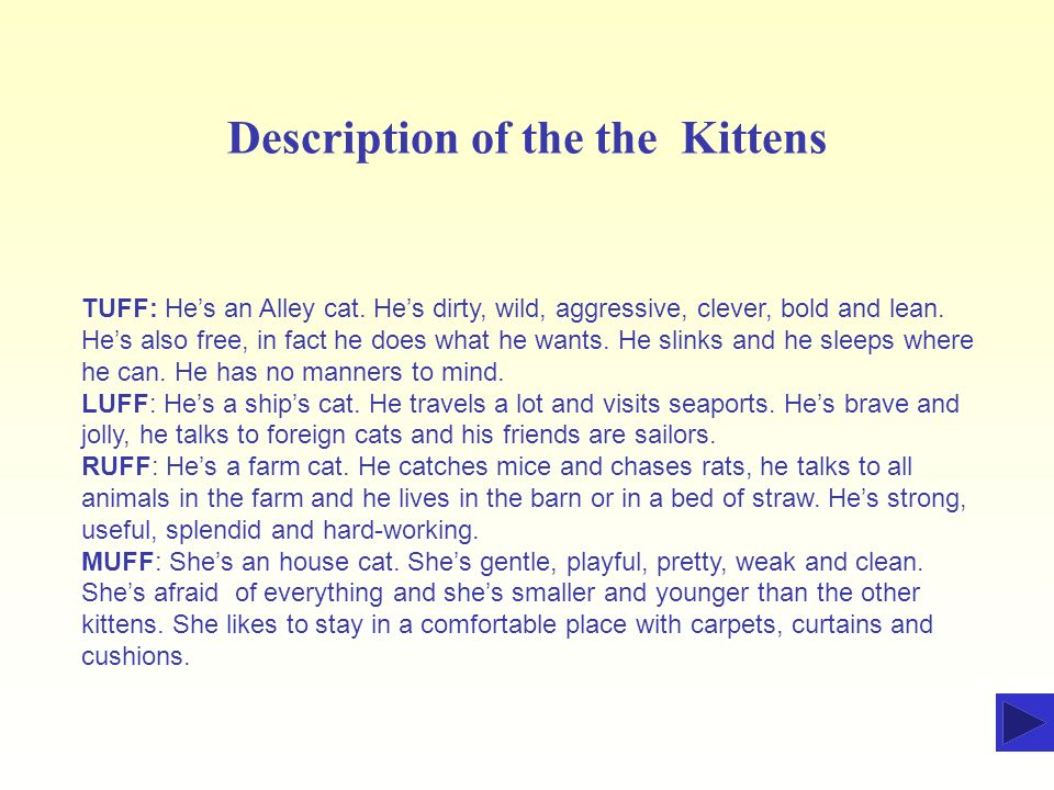 Description of the the Kittens