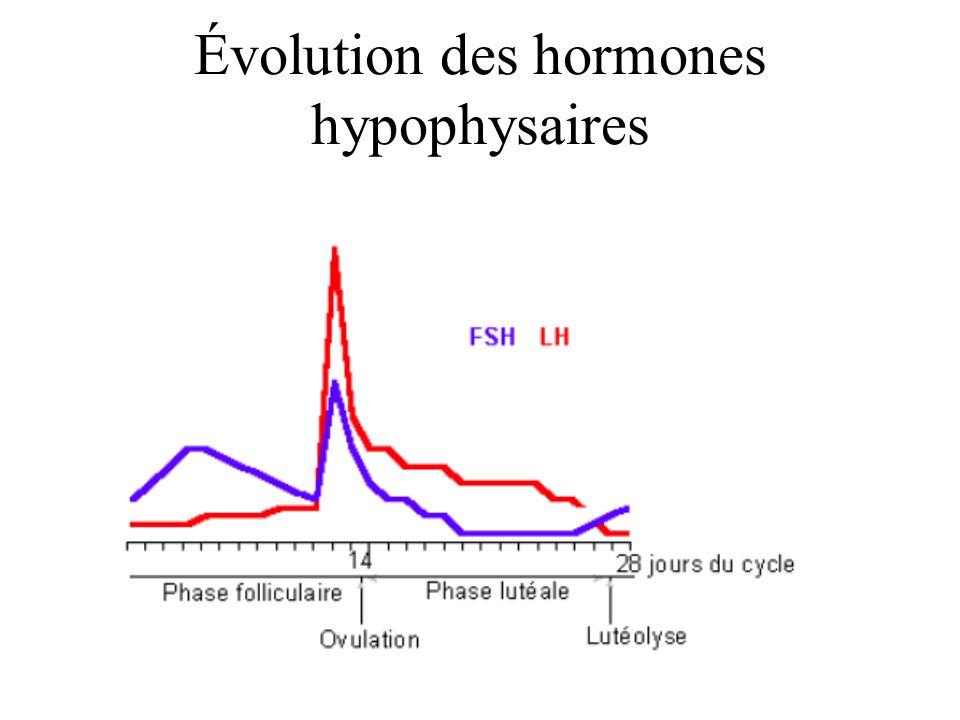 Évolution des hormones hypophysaires