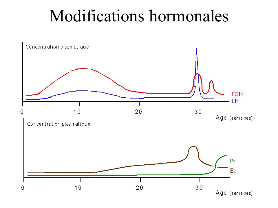 Modifications hormonales