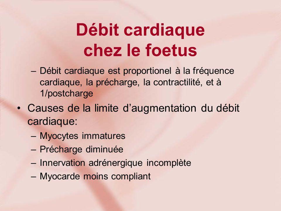 Débit cardiaque chez le foetus