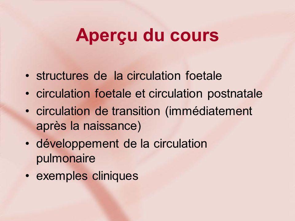 Aperçu du cours structures de la circulation foetale