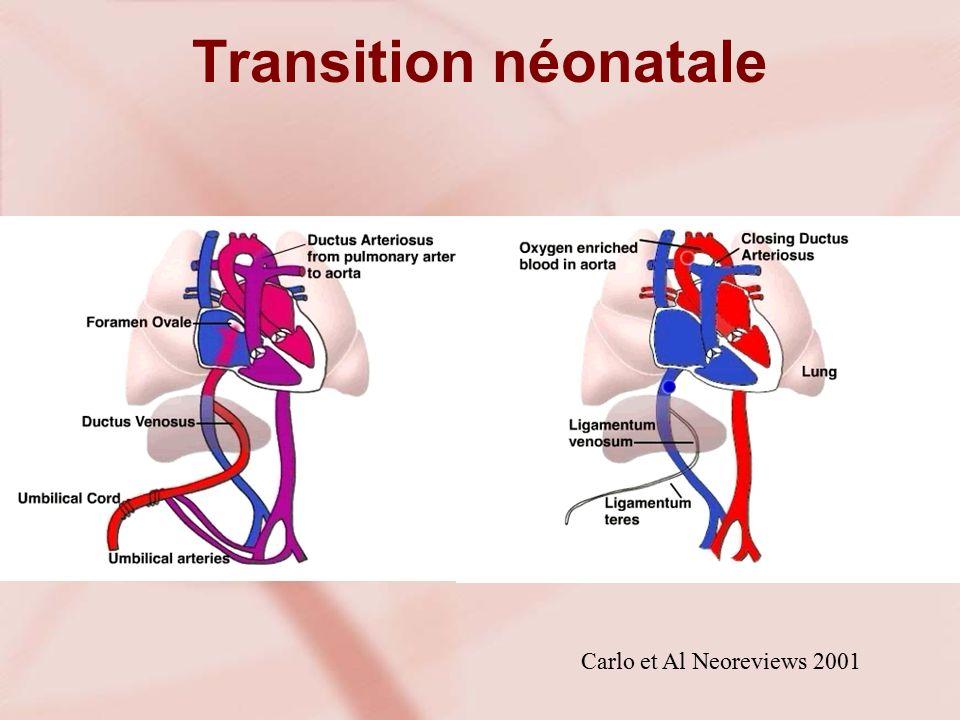 Transition néonatale Carlo et Al Neoreviews 2001
