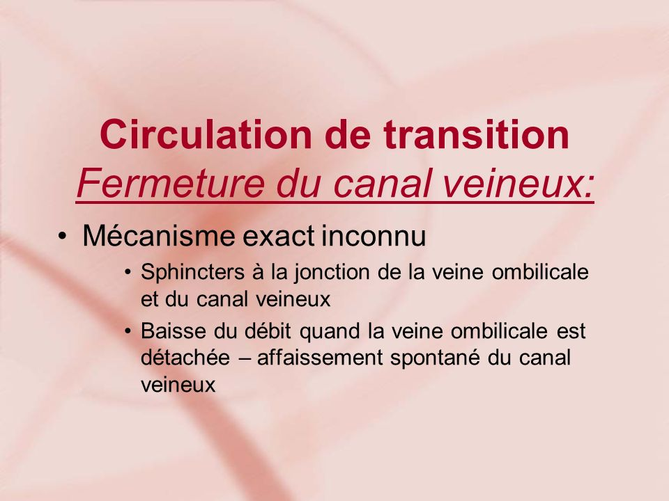 Circulation de transition Fermeture du canal veineux: