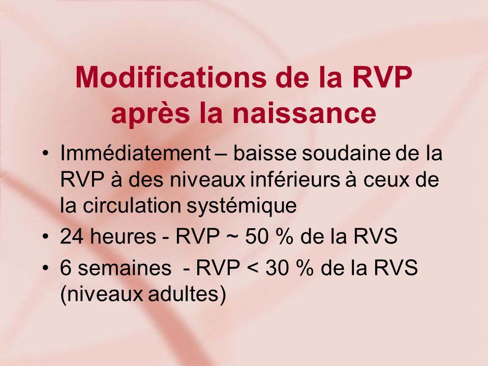 Modifications de la RVP après la naissance