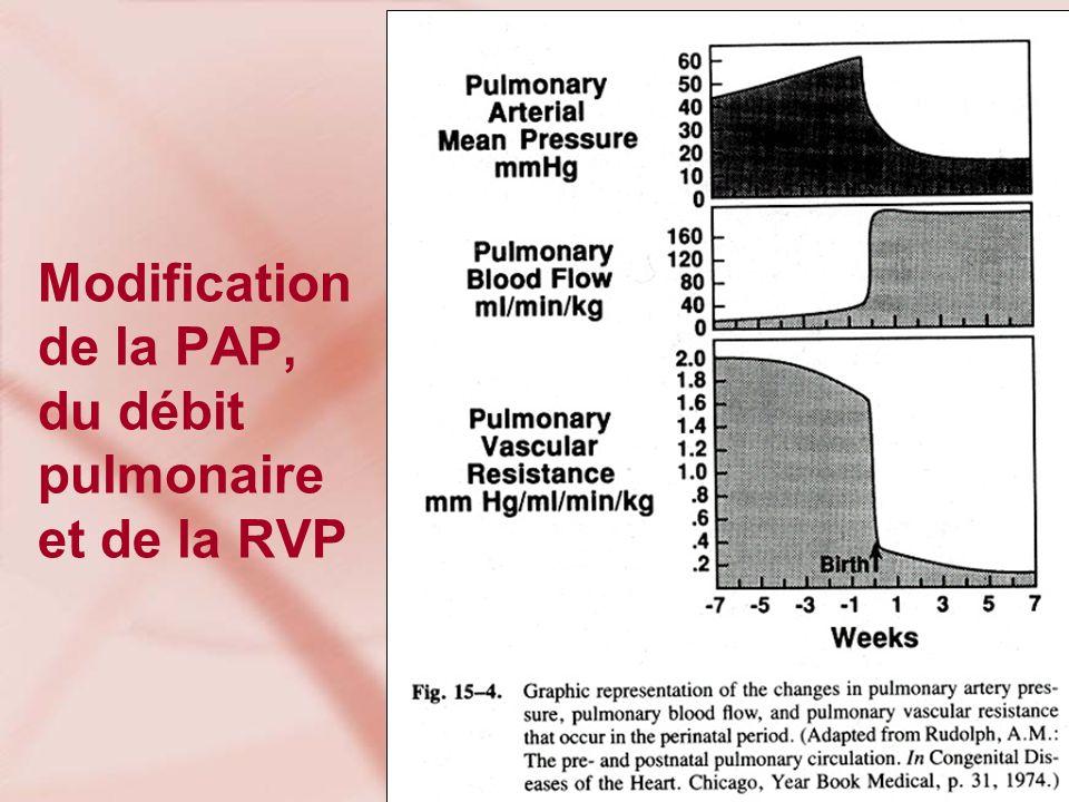 Modification de la PAP, du débit pulmonaire et de la RVP