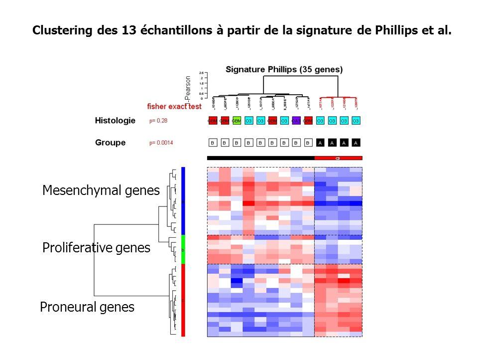 Mesenchymal genes Proliferative genes Proneural genes