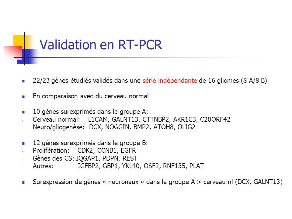 Validation en RT-PCR 22/23 gènes étudiés validés dans une série indépendante de 16 gliomes (8 A/8 B)