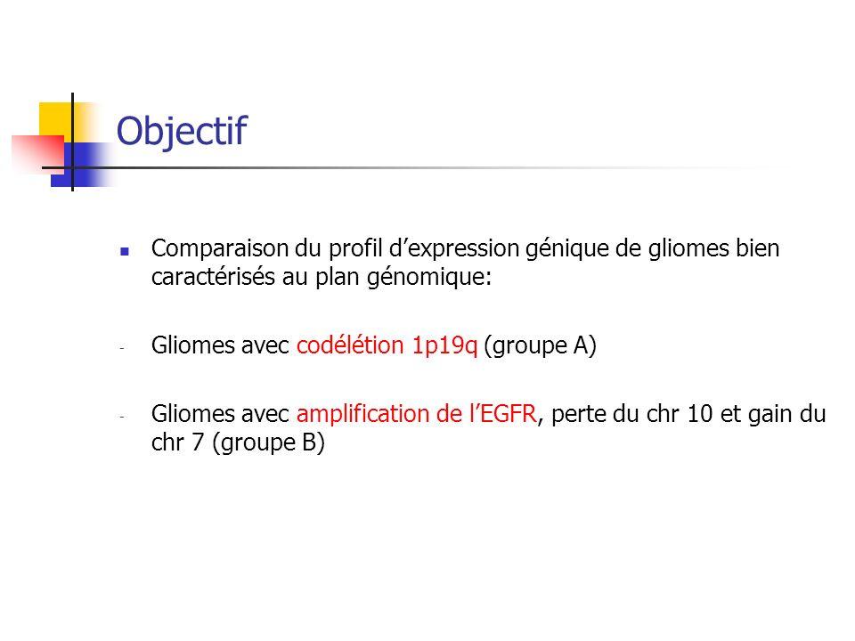 Objectif Comparaison du profil d'expression génique de gliomes bien caractérisés au plan génomique: