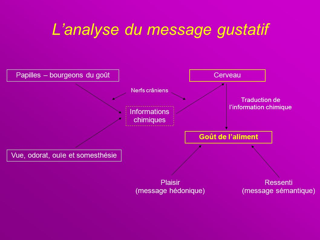 L'analyse du message gustatif