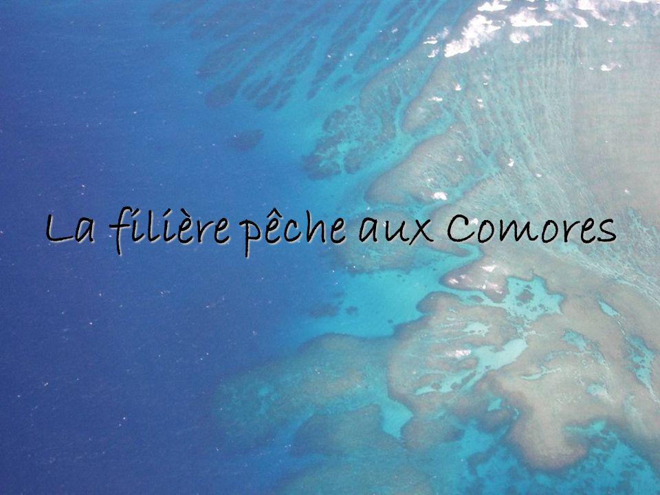La filière pêche aux Comores