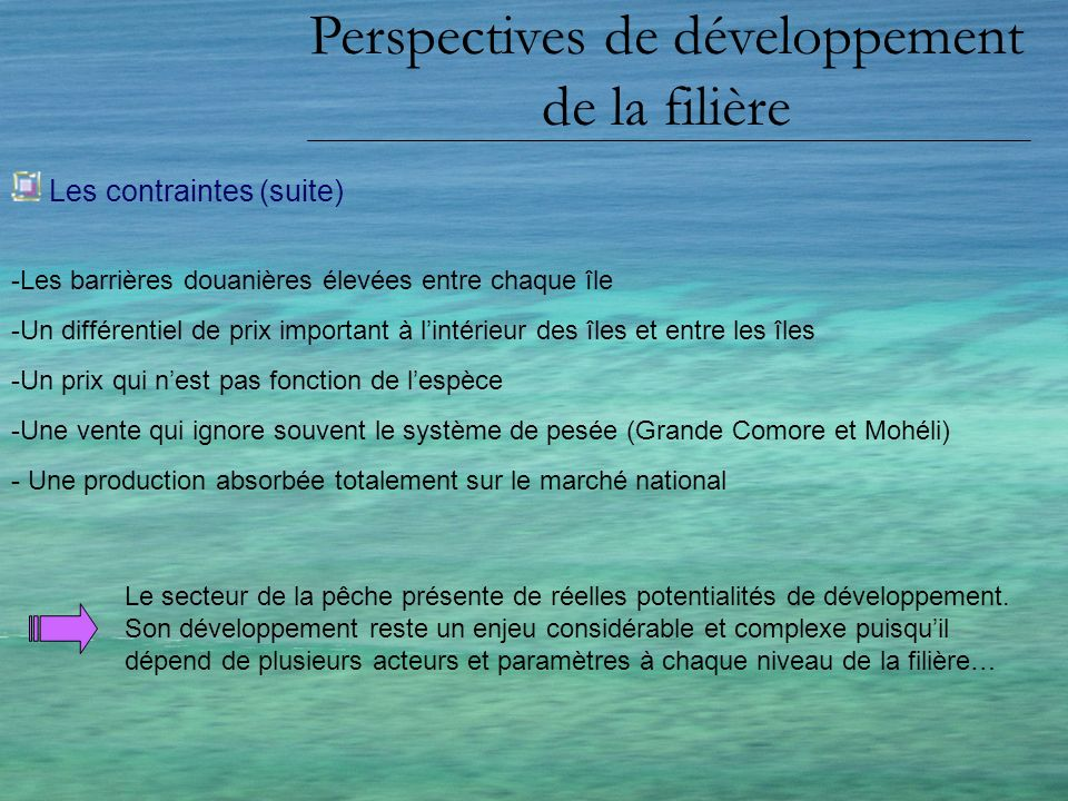 Perspectives de développement de la filière