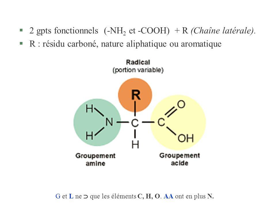G et L ne  que les éléments C, H, O. AA ont en plus N.