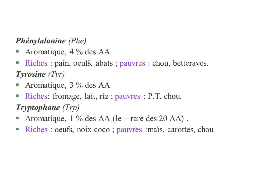Phénylalanine (Phe)Aromatique, 4 % des AA. Riches : pain, oeufs, abats ; pauvres : chou, betteraves.