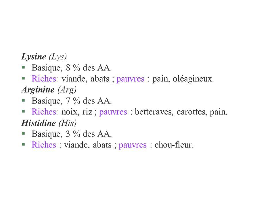 Lysine (Lys)Basique, 8 % des AA. Riches: viande, abats ; pauvres : pain, oléagineux. Arginine (Arg)