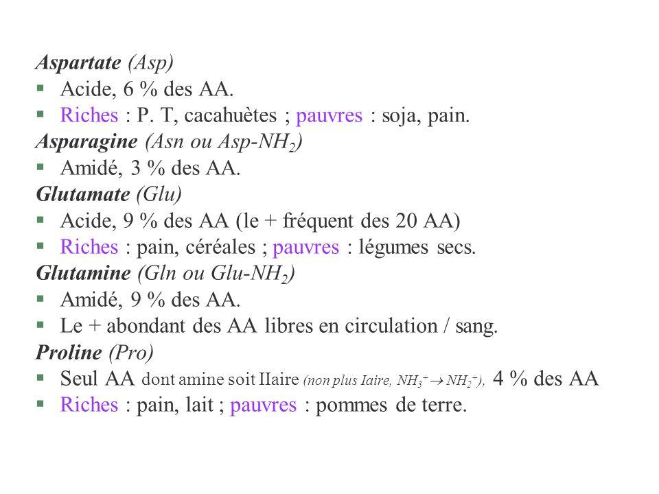 Aspartate (Asp)Acide, 6 % des AA. Riches : P. T, cacahuètes ; pauvres : soja, pain. Asparagine (Asn ou Asp-NH2)