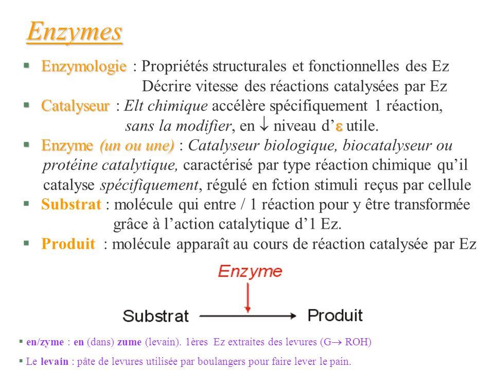 Enzymes Enzymologie : Propriétés structurales et fonctionnelles des Ez