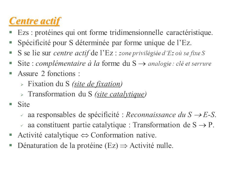 Centre actifEzs : protéines qui ont forme tridimensionnelle caractéristique. Spécificité pour S déterminée par forme unique de l'Ez.